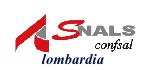 logo SNALS regionale